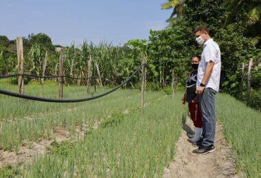 David e Marcos Rotta prometem escoamento da produção dos agricultores de Manaus