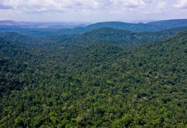 Unesco e Amazonas lançam plano de ação para Amazônia Central